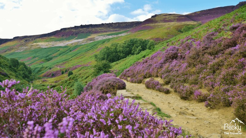 Peak district - Edale to Kinder Scout (8)