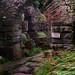 L2017_4453 - - Dewstow House  & Grottoes, Caerwent