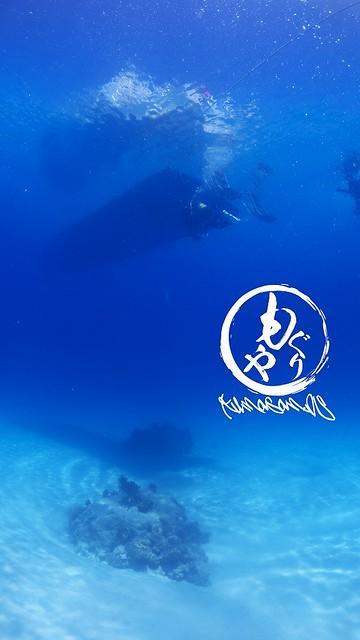 水深約10mの水底にくっきり映るグレベアちゃんの影♪