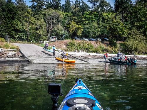 Kayaking Bellingham Bay-39
