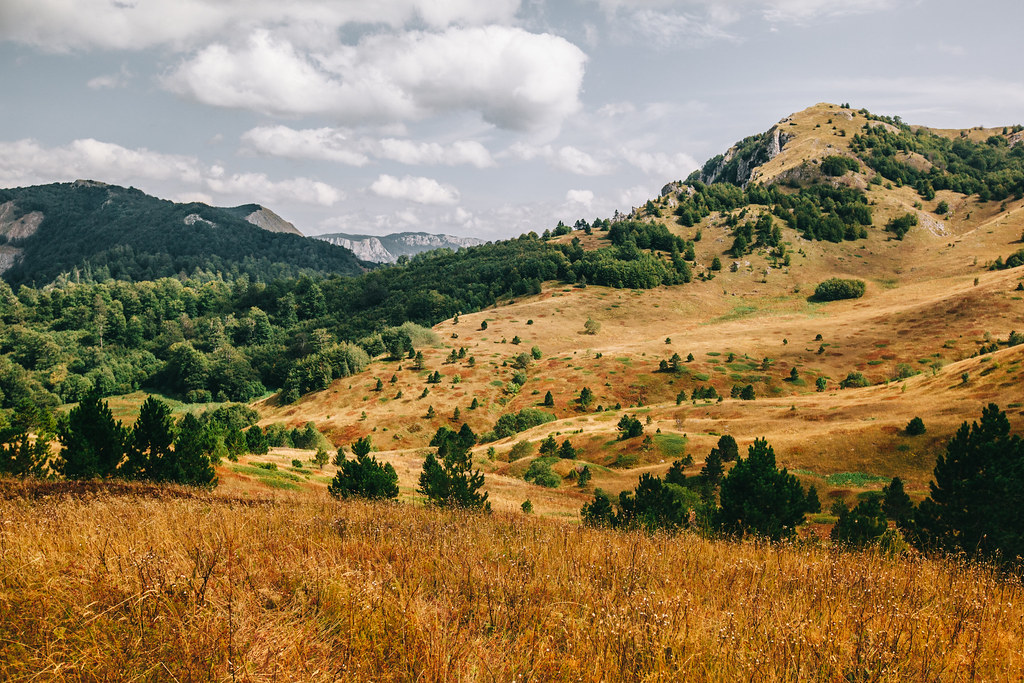Sutjeska National Park | Bosnia Hertsegovina