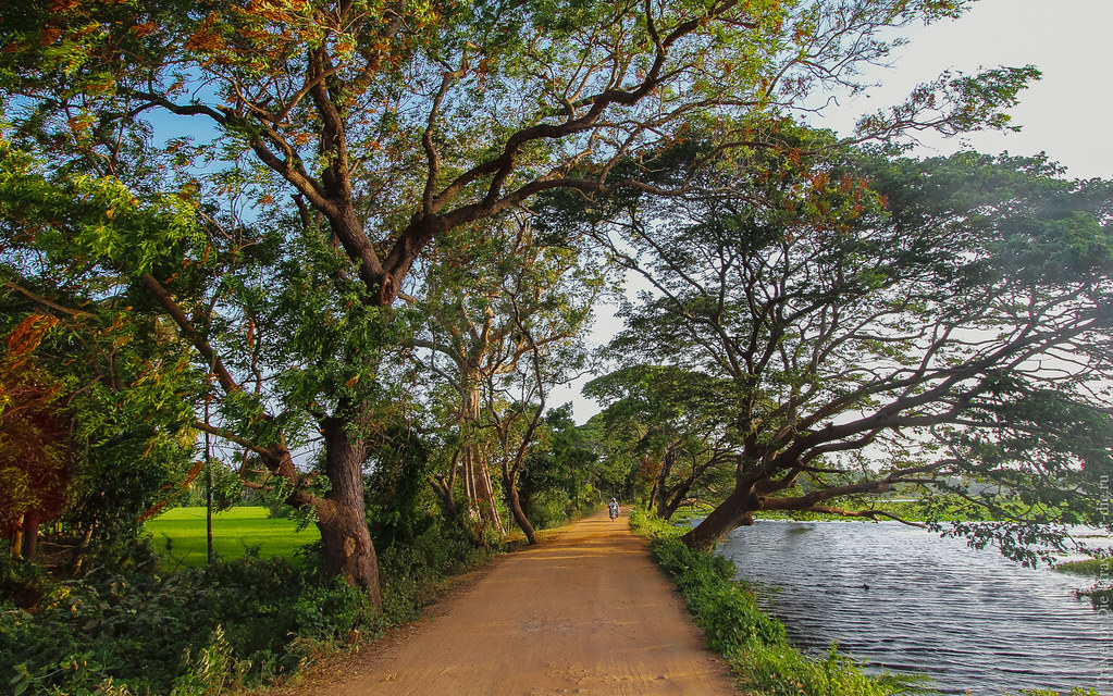 24.06-Tissamaharama-Sri-Lanka-canon-1500px-029