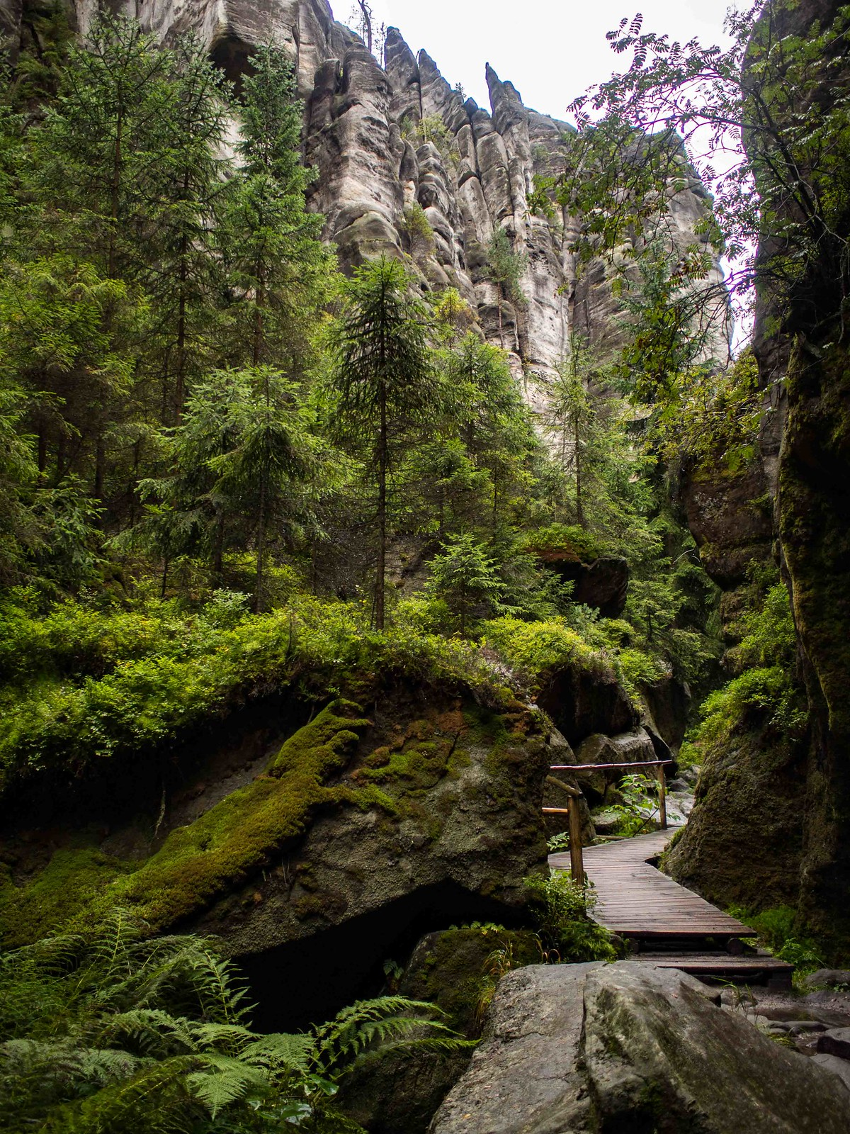 The most stunning hiking trails in the Czech Republic: Adrspach-Teplice Rock Towns