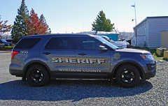 Whitman County Sheriff, Washington (AJM NWPD)