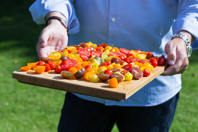 Coloured Tomatoes, Canon EOS 6D, Canon EF 100-400mm f/4.5-5.6L IS II USM
