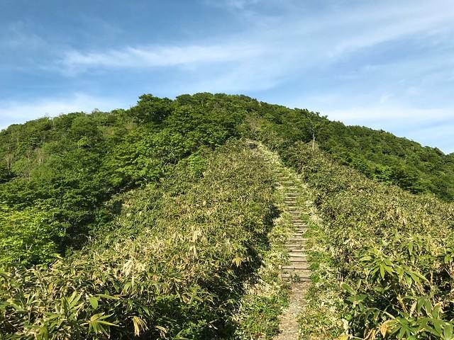 鷲ヶ岳 桑ヶ谷ルート 丸太階段の急登
