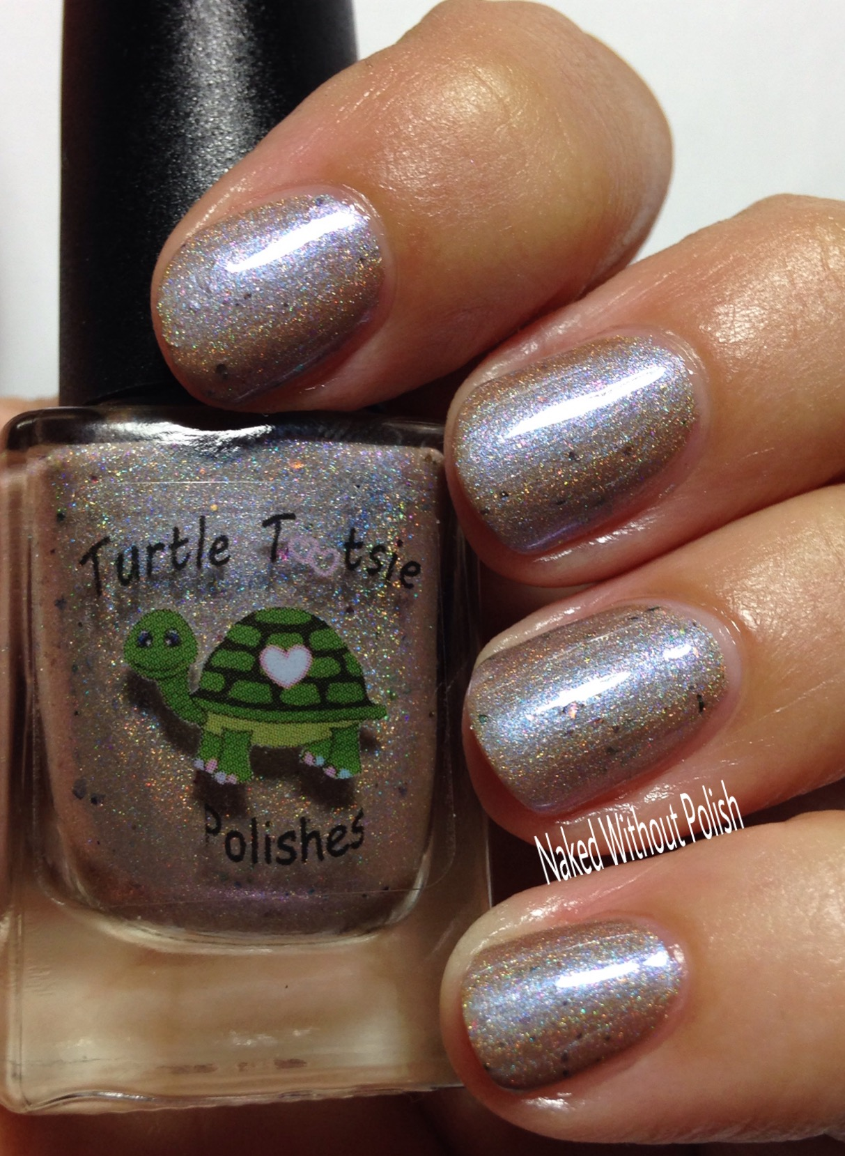 Turtle-Tootsie-Polishes-Makin-Fun-of-Me-Riz-11