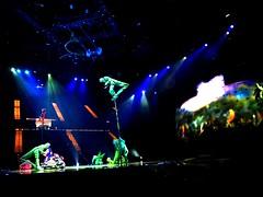 Cirque du Soleil OVO VI