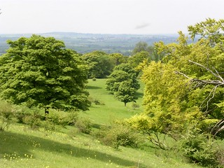 View from Chiltern Escarpment