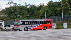 WMATA Metrobus 1997 Orion V #4271