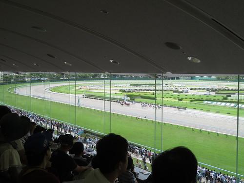 小倉競馬場の一般席からの眺望