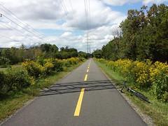 2017 Bike 180: Day 135 - Yellow