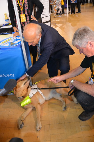 Vince Cable and guide dog Sept 17 (10)