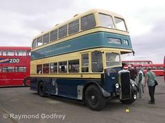 GEA 174 preserved Daimler CVG6 / Weymann - West Bromwich Corporation 174