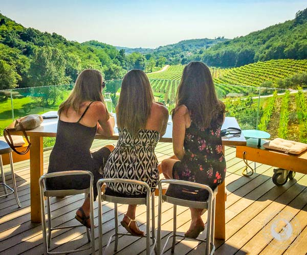 Wine Tasting In Istria With Vineyard Views
