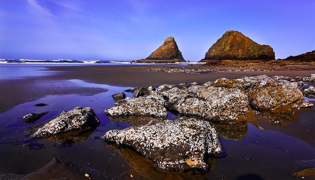Oregon Beach Rocks