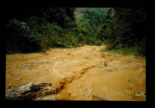 Soil Erosion, Frazer Hill = 土壌崩壊