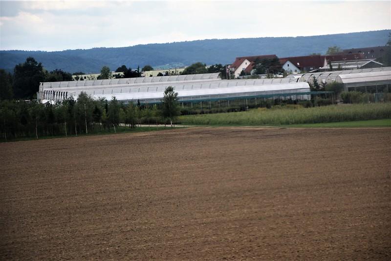 Schaffhausen 06.08 (141)