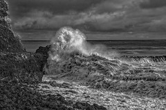 Magic Time at High Tide (monochrome)