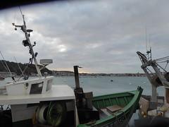 Erquy le port (7)