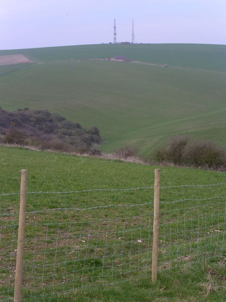 Looking back across the Downs