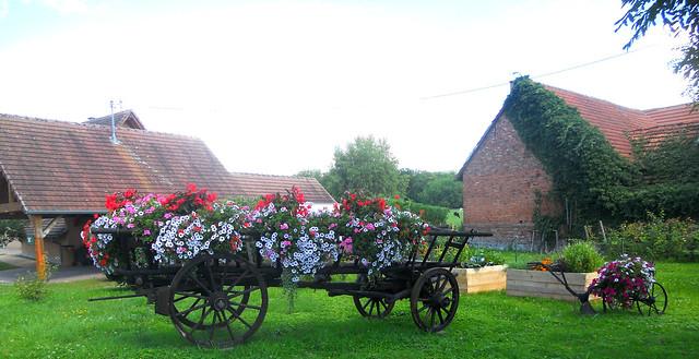 l'Alsace vous souhaite un, Nikon COOLPIX S3000