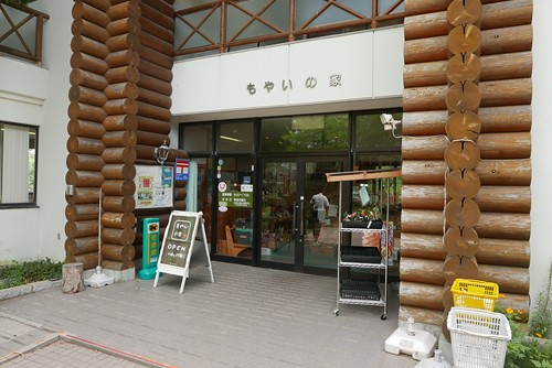 shosukechaya065