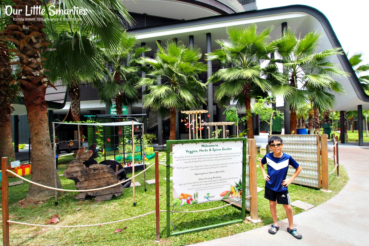 D'Resort Herbs Garden