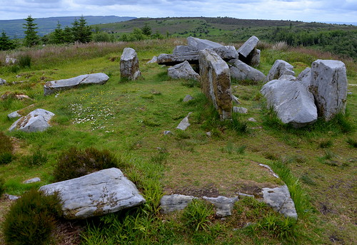Tullygobban Wedge Tomb