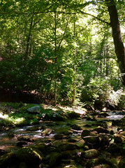 Middle Creek