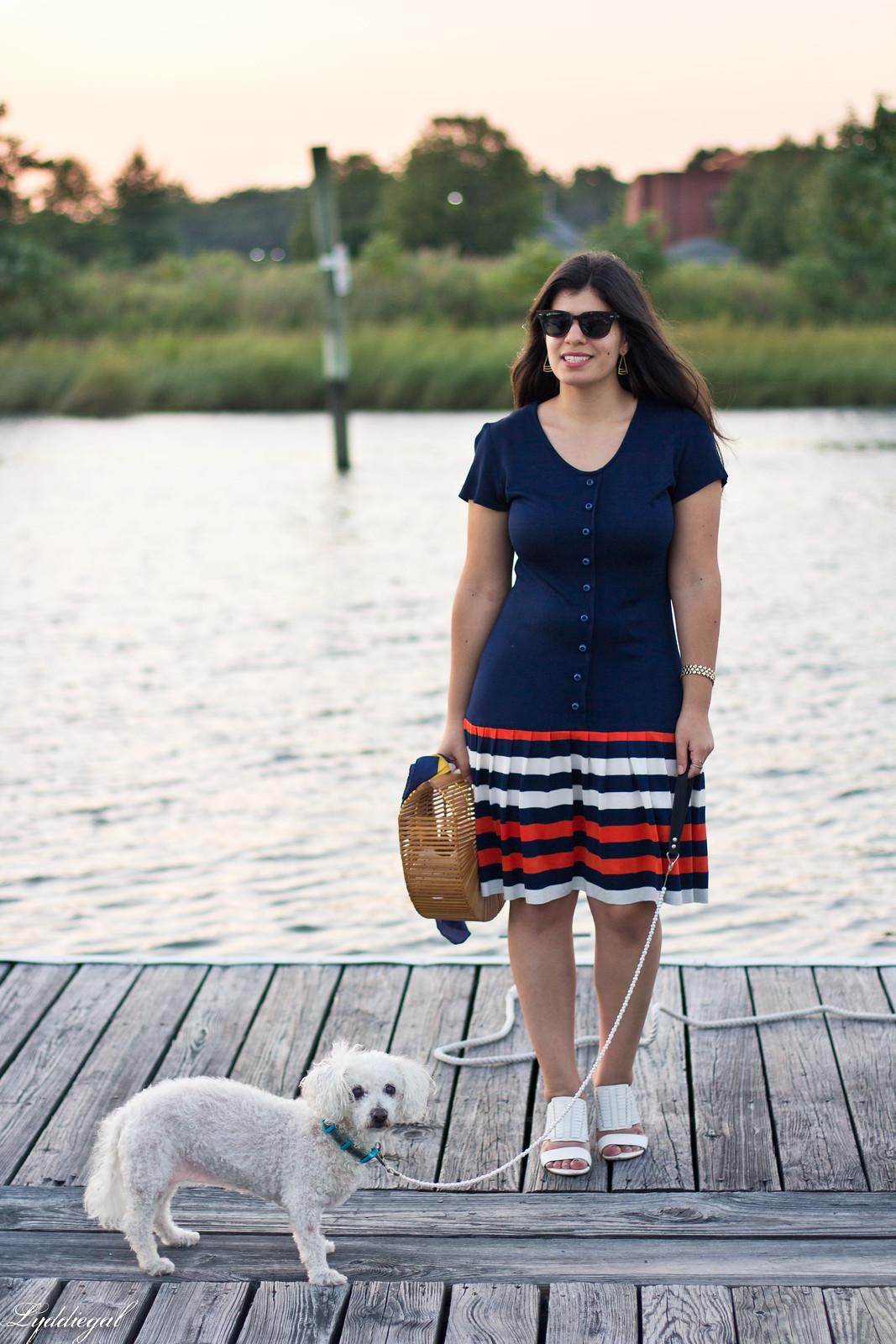 striped drop waist dress, bamboo bag, dog-3