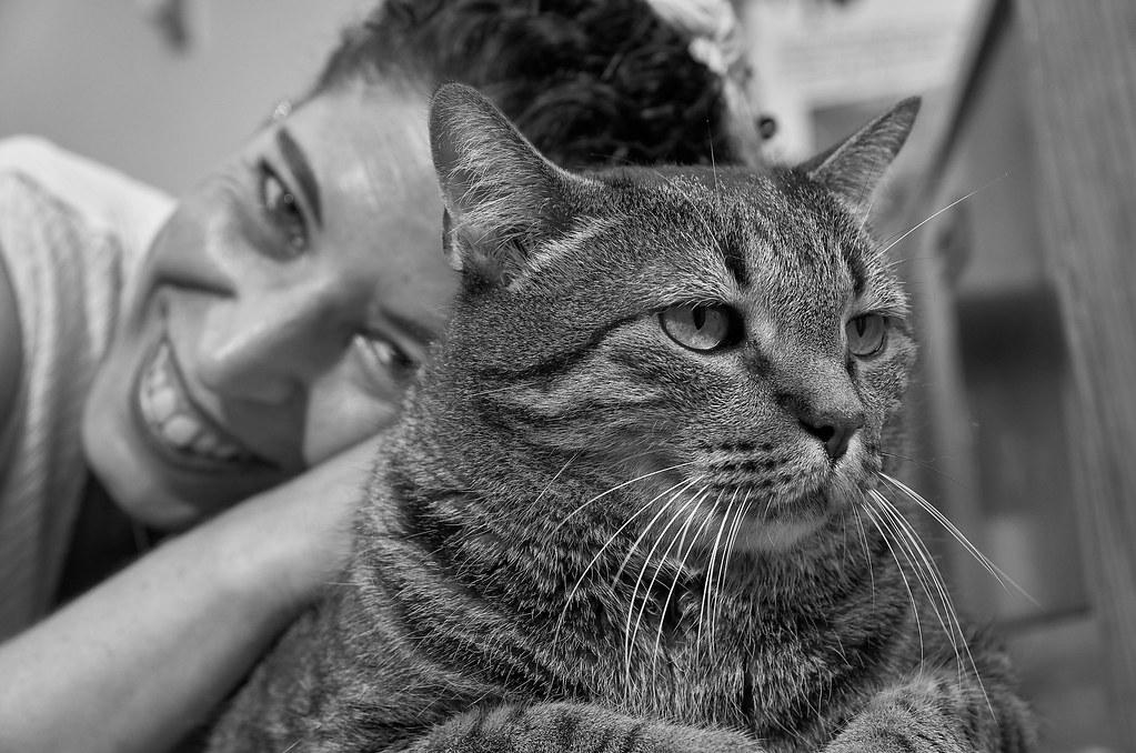 Àlex BN i els gats 15