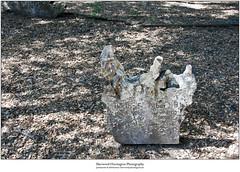 Redwood Headstone 1