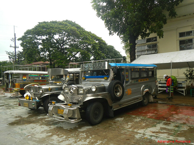 Traditional Jeepneys