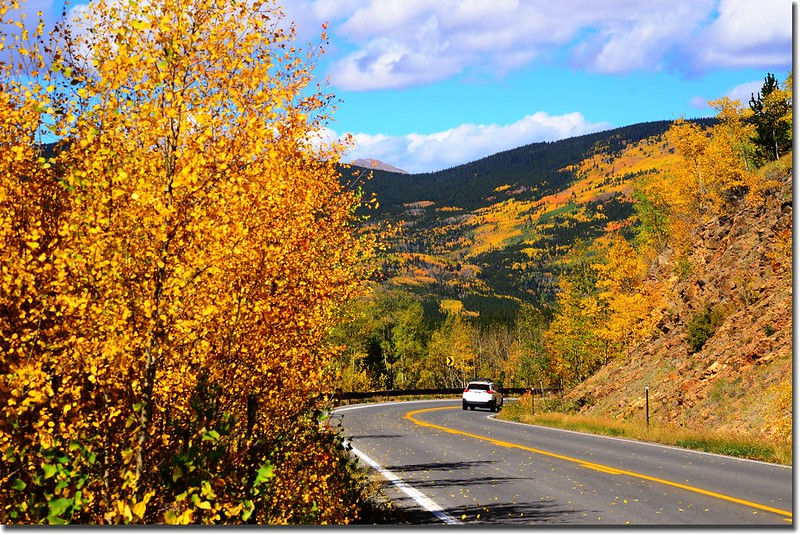 Fall colors, Mount Evans Scenic Byway, Colorado (46)