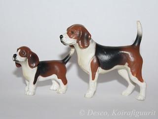 Kid Kore Beagle