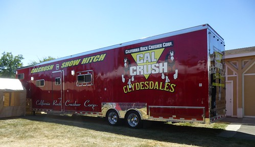 THIS BUDS FOR YOU-CLYDESDALE LIMO)