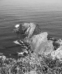 Gull Rock_-3