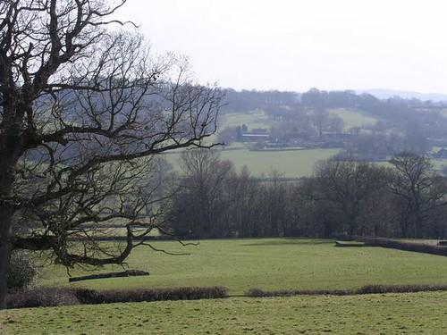 View from near Burwash