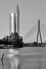 4_1688-2 Modernes Bürohochhaus - Zentrale der Swedbank in Riga, erbaut 2004 - Architekt Saules Akmens. Daneben ein Pylon der Vanšu-Brücke über die Daugava / Düna.