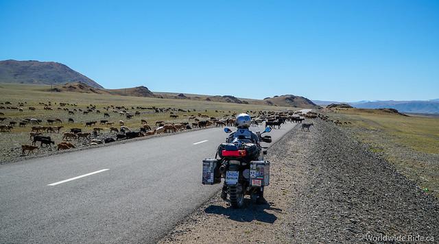 Mongolia Uglii to Khvod-6