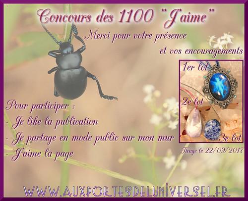 Aux Portes de l'Universel concours facebook des 1100 j'aime
