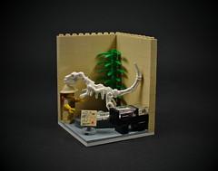09 - Paleontologist