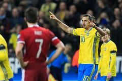 2015-11-14 Sverige-Danmark SG0124