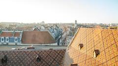 Les toits du Musée du Temps et Besançon