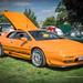 Classic Car and Transport Show - Shugborough Hall, Staffordshire - Lotus Esprit GT3