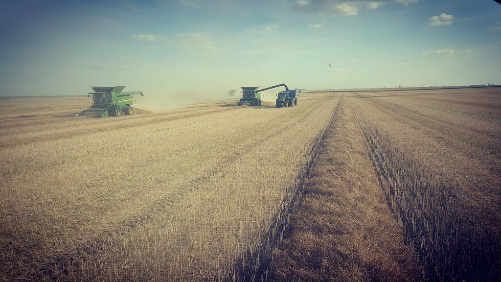 Schemper 2017 Eastern North Dakota Harvest