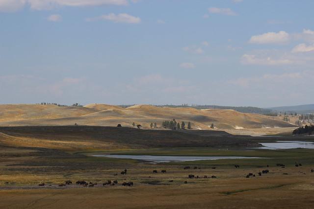 091217 Yellowstone (277)