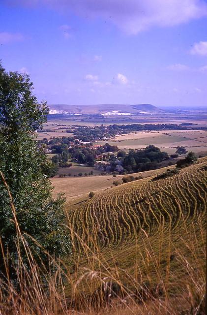 Ridge View 1