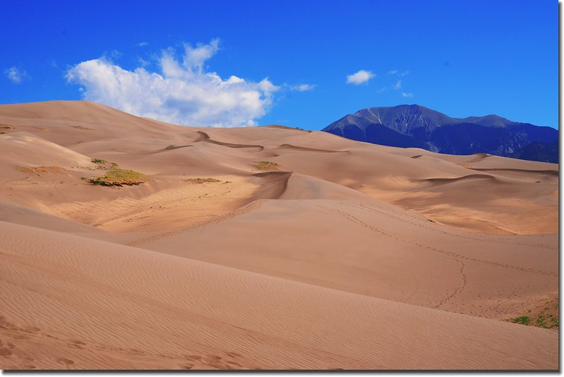 Great Sand Dunes National Park  (7)